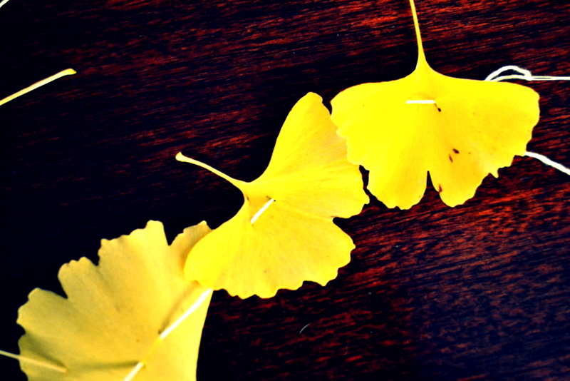 gingko garland