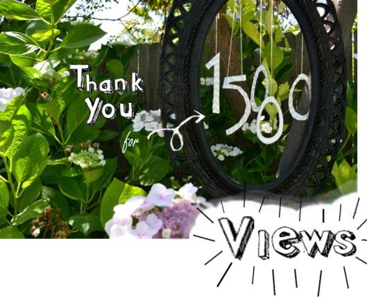 vmmv 15000 views