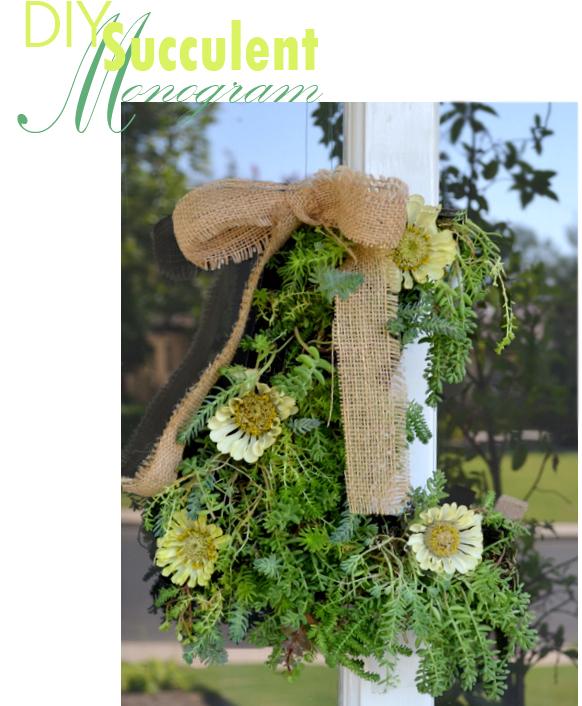 diy succulent monogram